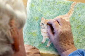 man drawing a picture of a ginger cat